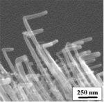 Growing bent carbon nanotubes: nanotube SEM
