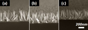 ZnO nanowires on silicon, glass and PET substrates