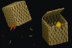 Nano-boxes