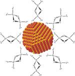 CdSe nanocrystal