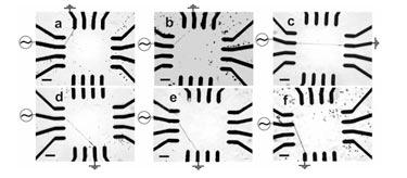 Nanowires grown between user-selected electrode pairs