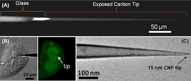 Nanopipette: images of the integrated carbon probe