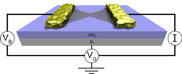 The graphene NCFET