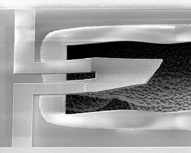 Micrograph of the resonator
