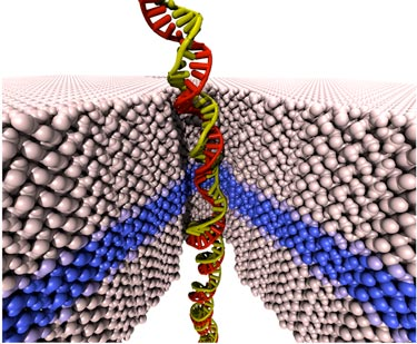 Nanopore device for sequencing double-stranded DNA