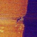 RF-STM image