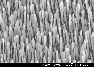 Silver nanowires on a silicon substrate