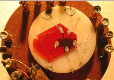 An organic single-crystal transistor made out of rubrene (red crystal)