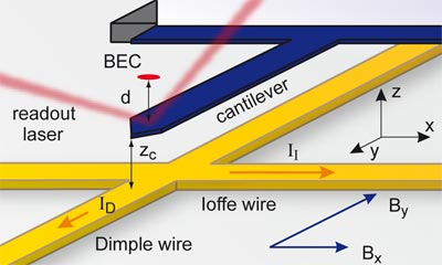 Coupling a BEC and cantilever