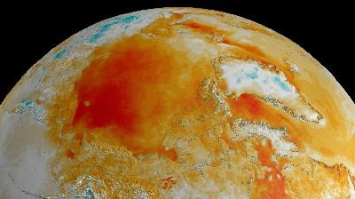 Arctic surface temperature trends 1981-2008