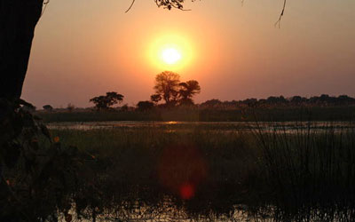 Sun setting over the Okavango Delta region. Courtesy: Lucia Seyfarth/University of Pennsylvania