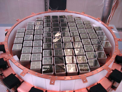 Photograph of the XENON 100 detector's bottom photomultiplier tube array