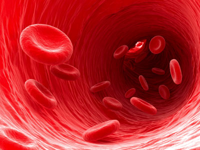 Artist's impression of red blood cells flowing through a blood vessel