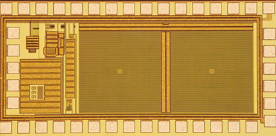 The micro-camera pixel array