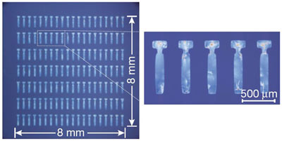 Micrographs of an array of single-crystal thin-films.