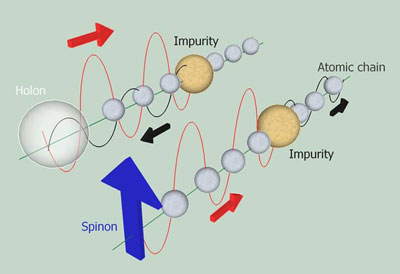 How spinons and holons react to an impurity