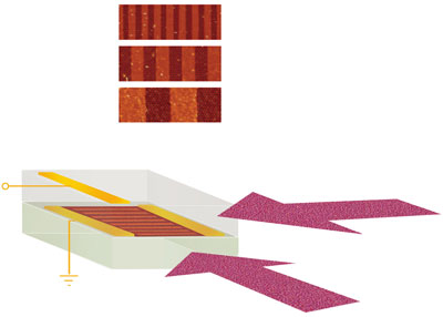 Diagrams show how terahertz radiation can be absorbed