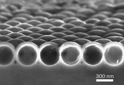 Scanning-electron-microscope image of a single layer of silicon spherical nanoshells