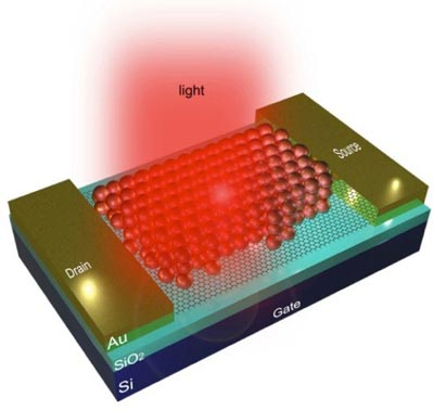 Diagram showing how quantum dots are combined with graphene to detect light