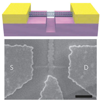 Schematic and electron-microscope image of the mass sensor