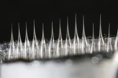 Image of the nano-scale capillary tubes
