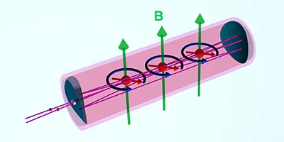 Illustration showing the magnetic spins precessing with respect to the magnetic fields