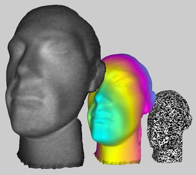Three different versions of the head reconstructed by Sun et al.