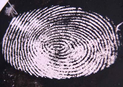 Image of a fingerprint enhanced using electrodeposition