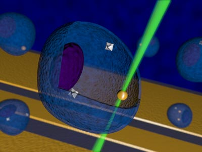 Artist's representation of nanoscale temperature control inside a living cell using diamond nanocrystals